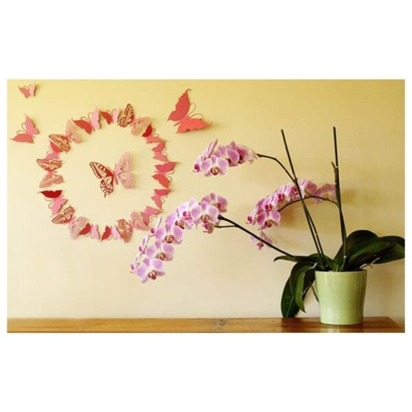 3d butterflies vinyl wall sticker | stickers - metro home centre menlyn